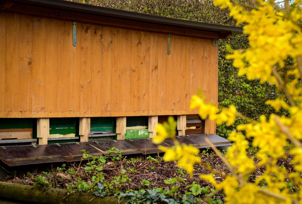 Bienenstöcke im GART